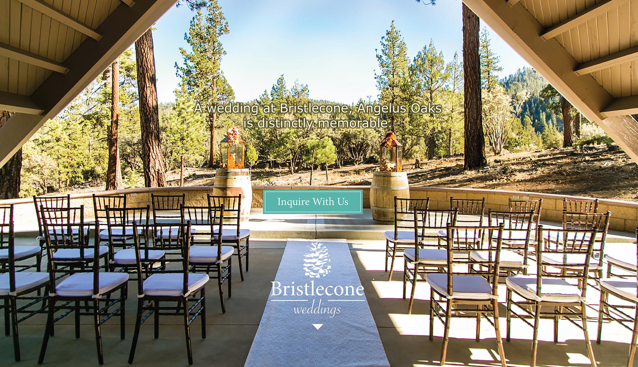 Weddings At Bristle Cone